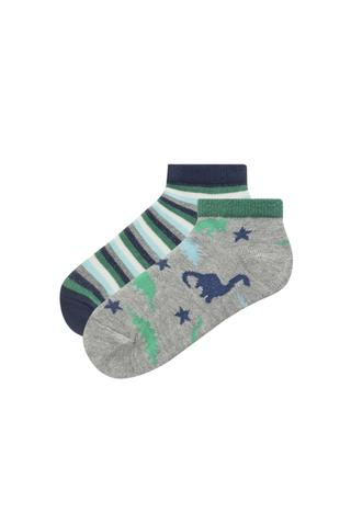 Boys Dino 2 İn 1 Liner Socks
