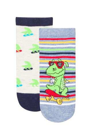 Little Dino 2 In 1 Liner Socks
