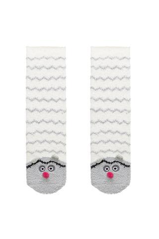 Boys Beary Socks