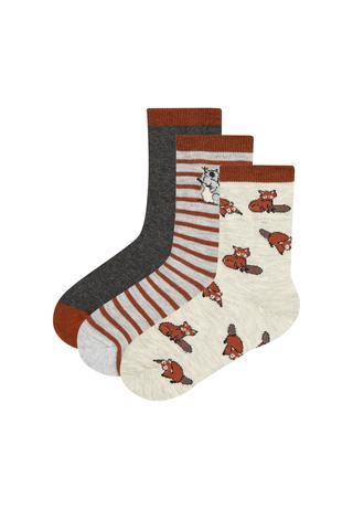 Boys Racoon 3in1 Socks