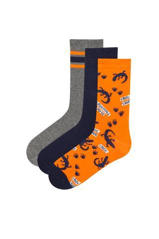 Boy Croc Star  3ın1 Socks