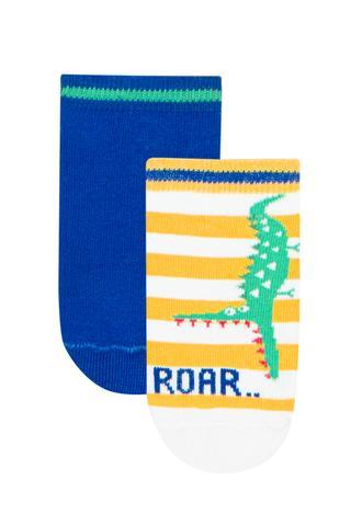 Boy Roar 2In1 Liner Socks