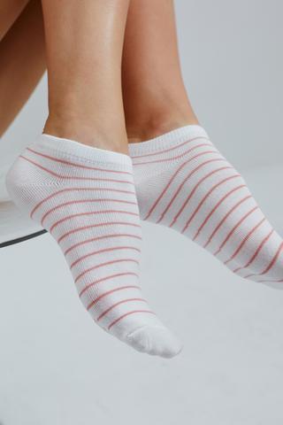 Puanlı Liner Socks 3In1